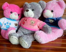 http://koleksiboneka.com/wp-content/uploads/2020/11/bear-happy.jpg