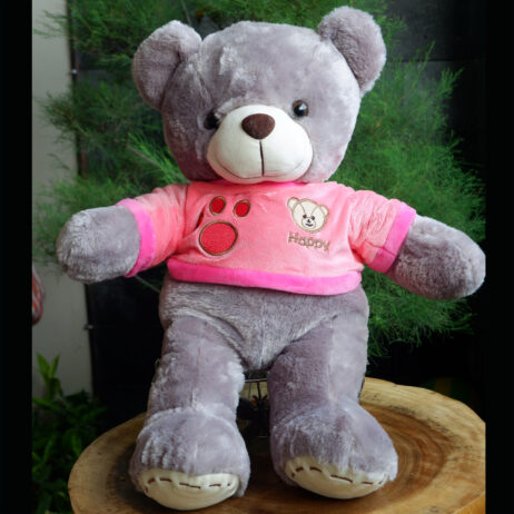 http://koleksiboneka.com/wp-content/uploads/2020/11/bear-happy-abu2.jpg