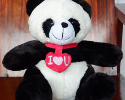 http://koleksiboneka.com/wp-content/uploads/2020/11/panda-love-u2.jpg